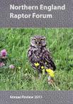 NERF 2011 report