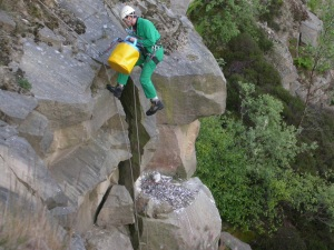 Abseiling to ring a peregrine chick